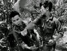 見方側のベトナム人を襲う朝鮮人兵士