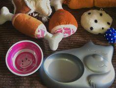 Runars World : Tipps zur Hundeernährung