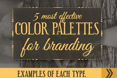 The 5 Most Effective Types of Color Palettes For Branding