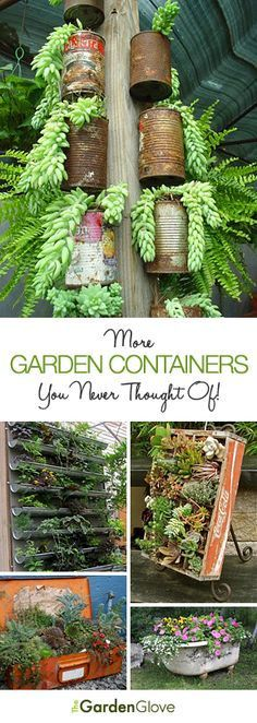 """One of our most popular series of posts has been """"Containers You Never Thought Of"""". So we decided it was time to update this post with even more new, unique garden containers for you. And we found some amazing creative planter ideas! Succulents Garden, Garden Plants, Planting Flowers, Backyard Plants, House Plants, Plantas Indoor, Pot Jardin, Unique Gardens, Cactus Y Suculentas"""