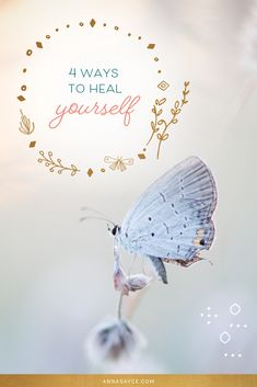 I believe that healing (bringing ourselves back into alignment with love and joy) is a big part of some peoples' soul purpose here. Some people don't bother with healing until they're presented with an ultimatum by their body. Intuitive Healing, Some People, Our Body, Purpose, Joy, Spiritual, Anna, Profile, Posts