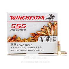 Winchester 22 LR Ammo - 555 Rounds of 36 Grain CPHP Ammunition