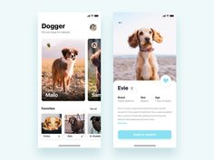 App for adopt dogs - Daily UI Challenge by Christian Vizcarra