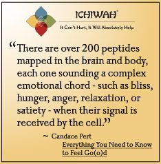There are over 200 peptides mapped in the brain and body, each one sounding a complex emotional chord - such as bliss, hunger, anger, relaxation, or satiety - when their signal is received by the cell.  – Candace Pert, Everything You Need to Know to Feel Go(o)d