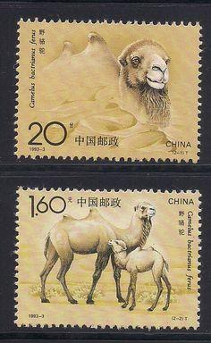 selos com camelos - Pesquisa Google