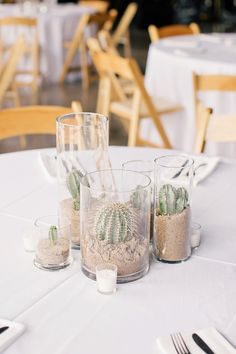 cactus and sand centerpiece | photo: to live to love photography
