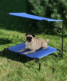 Great for taking your dog to your kids soccer games!  Take a look at this Two-Tier Pet Canopy Cot by Etna Products on #zulily today!