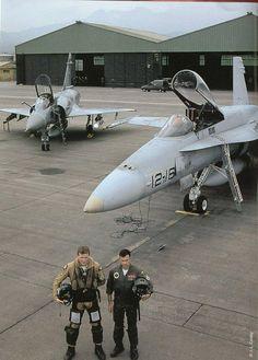 MIRAGE 2000 FRANCES Y F-18 DEL EJERCITO DEL AIRE ESPAÑOL