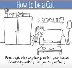 How to be a cat . . .