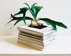 Recycle those old magazines...just line with heavy plastic or insert a plastic pot.