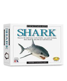 Look at this #zulilyfind! Shark Model Kit #zulilyfinds