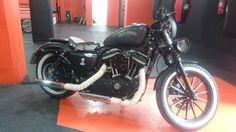 Harley Davison 883 Iron