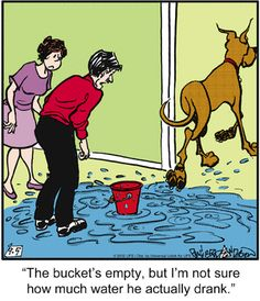 Marmaduke on Gocomics.com This is so true!  We had one Dane that never swallowed his last tongue-full of water.  He would just let it run out of his mouth.