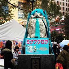 "An owl doing ""cosplay"" of Hatsune Miku the famous vocaloid. #cosplay #mikuhatsune #mikucosplay #halloween #tokyo"