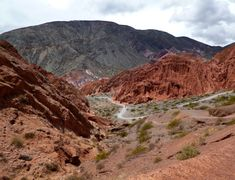 Argentina Salta Pumamarca - Best arid and desert experiences Explorer, Geology, South America, Grand Canyon, Deserts, Scenery, Survival, The Incredibles, Landscape