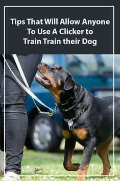 Clicker Training H Clicker Training How Does It Work Dog