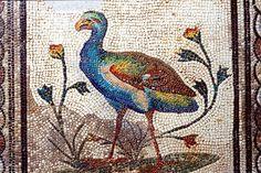 La mosaïque aux Xenia.Saint-Romain-en-Gal. Rhône