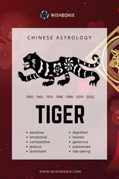 Introduction to the characteristics of the Chinese Zodiac Sign Tiger in Chinese Astrology. Astrology Report, Astrology And Horoscopes, Chinese Astrology, Astrology Numerology, Chinese Zodiac Signs, Astrology Zodiac, Tiger Chinese Zodiac, Learn Astrology, Sagittarius