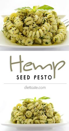 Hemp Seed Pesto - try new no nuts recipe for pesto for variety and additional health benefits Hemp Seed Recipes, Nut Recipes, Vegetarian Recipes, Cooking Recipes, Healthy Recipes, Recipies, Hemp Recipe, Healthy Snacks, Healthy Eating