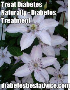 Treat Diabetes Naturally - Diabetes Treatment diabetesbestadvice.com