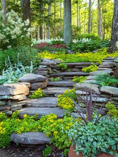 8 Competent Clever Tips: Backyard Garden House Chicken Coops backyard garden on a budget fire pits.Dream Backyard Garden Design backyard garden flowers how to grow.Backyard Garden Shed Colour. Sloped Yard, Sloped Backyard, Large Backyard, Modern Backyard, Hillside Garden, Sloping Garden, Japanese Garden Backyard, Japanese Garden Landscape, Rooftop Garden