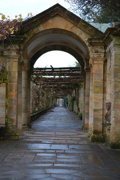 The Italian Gardens, Hever Castle
