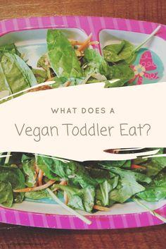 What Does A Vegan Toddler Eat? | vegan | vegan kids | vegetarian | vegan parenting | vegan parents | parenting