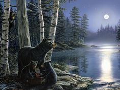 "River's Edge Products ""Moonlight Bears by James Meager LED Lighted Gallery Wrapped Canvas Art, X Multicolor Lighted Canvas Pictures, Minnesota, Cabin Lighting, Moon Painting, Bear Art, Wildlife Art, Decoration, Art Pictures, Moonlight"