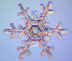 Winter's Hidden Beauty~ The Snowflake _ The photograph below, of a considerably more recent vintage than Bentley's, was made with electron microscopy in 2003. Wilson Bentley, snowflake, under electron microscope, snow crystals. (About 2/3 of the way down the page). (Source: National Geographic).