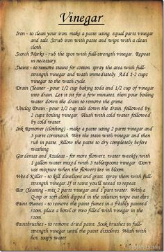 Vinegar Uses - Part 2 (Page 2)