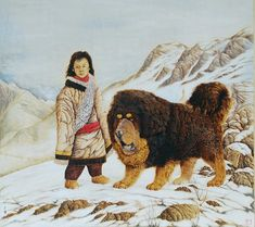 The Guard Of Heaven The First Of Tibetan Mastiff Series Pyrography