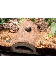 Terrarium T-Rex Reptile Terrarium Decor Rockview Caverns Hide reptiles Caverns decor Hide Reptile reptile terrarium decor Rockview terrarium TRex Terrarium Diy, Terrariums Gecko, Terrarium Reptile, Aquarium Terrarium, Terrarium Stand, Reptile Cage, Reptile Habitat, Tarantula Habitat, Reptile Tanks