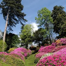 Villa Carlotta's Gardens in Lake Como, Italy