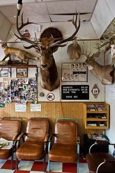 Barber SHop with Elk
