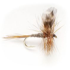 Adams -- A dry fly pattern that should be in every fly box. The Adams Dry Fly is a versatile dry fly fishing pattern and has become recognized as a popular dry fly on trout rivers around the world.