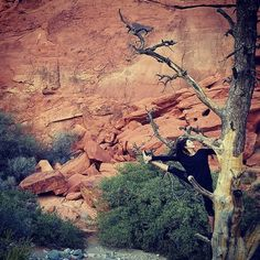Maddyandwolf @maddyandwolf on Instagram photo November 7