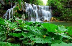 Waterfall jpg