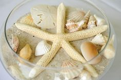 Starfish Bowl Center Piece