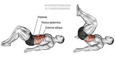 Target muscle: Rectus Abdominis. Synergistic muscles: Obliques and Iliopsoas (hip flexors). Learn why the reverse crunch is more effective than the standard crunch on my site.