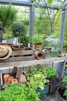 Home greenhouse ideas Outdoor Greenhouse, Backyard Greenhouse, Small Greenhouse, Greenhouse Gardening, Outdoor Gardens, Greenhouse Ideas, Homemade Greenhouse, Portable Greenhouse, Garden Shed Interiors