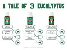 An informational card for sharing and/or educating potential or current members about the three different types of eucalyptus essential oils Young Living offers.