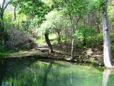 On the Texas bucket list: visit Mother Neff State Park. The park was founded on land donated by Isabella Neff, the mother of former Baylor President Pat Neff!