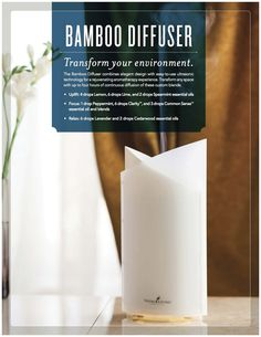The Bamboo Diffuser Get the details-->…