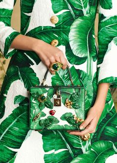 pret-a-porter 2016 / 2017 Dolce & Gabbana