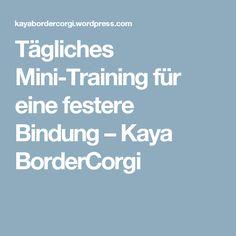 Tägliches Mini-Training für eine festere Bindung – Kaya BorderCorgi