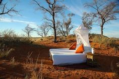 Safari to Tswalu Tarkuni with Africa Travel Resource Romantic Beach, Destination Voyage, Game Reserve, African Safari, Honeymoon Destinations, Africa Travel, Horse Riding, Lodges, South Africa