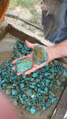 Natural gem quality Cripple Creek Co. turquoise from the Burtis Blue Mine. Right out of the tumbler :)