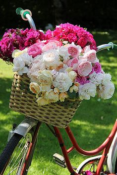 Bike basket bouquet I plan on riding to the ceremony on my old fashioned bike :) My Flower, Fresh Flowers, Beautiful Flowers, Romantic Flowers, Simply Beautiful, Absolutely Gorgeous, Colorful Roses, Deco Floral, Spring Blooms