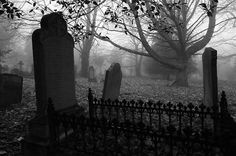 South ealing graveyard, by kwozie.