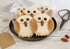 Send your guests home with something sweet and creative, like these tasty butter owl cookies by Heather Baird. Owl Cookies, Cookies Et Biscuits, Acorn Cookies, Sugar Cookies, Yummy Treats, Sweet Treats, Yummy Food, Fall Recipes, Holiday Recipes